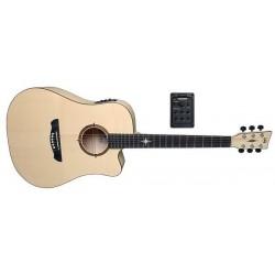 Vgs Guitars P-10 CE POLARIS...