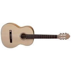 Vgs Guitars CHITARRA...