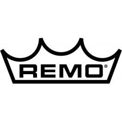 Remo Pelli Ambassador...