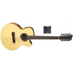 VGS Guitars Serie Bayou...