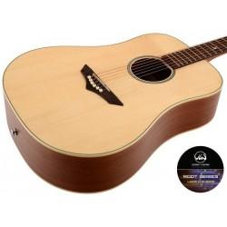 Vgs Guitars RT10 Natural...